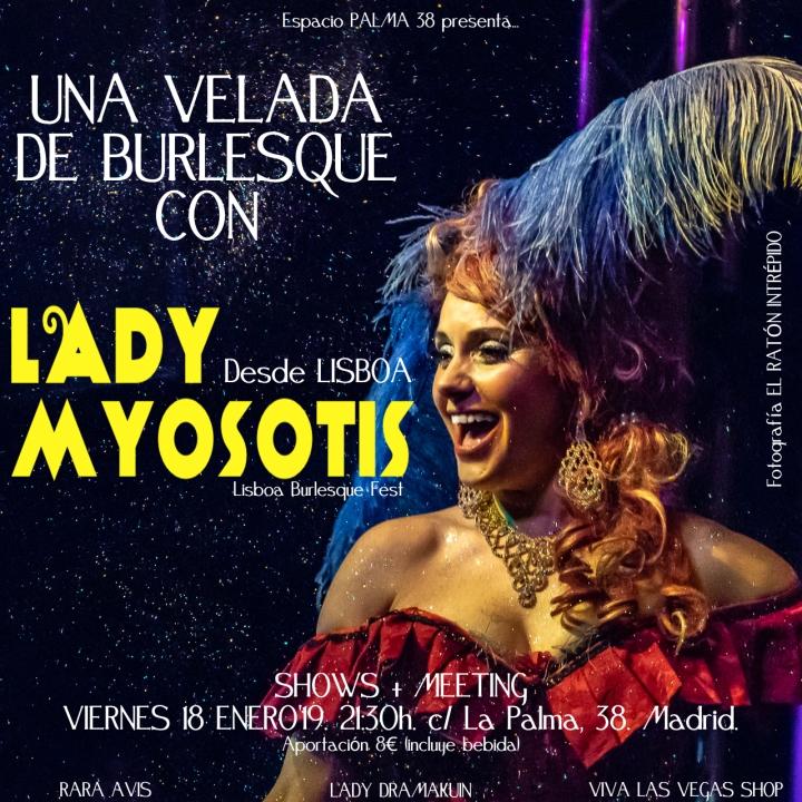 velada lady myosotis